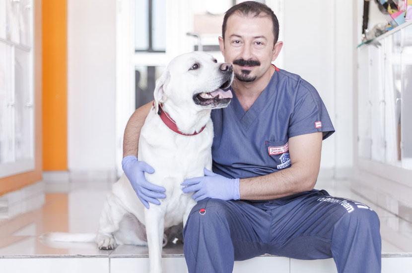 ankara çayyolu veteriner koruyucu hekim hizmeti