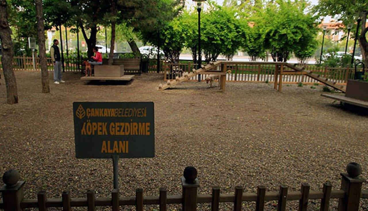 Ankara Cemal Süreya Parkı