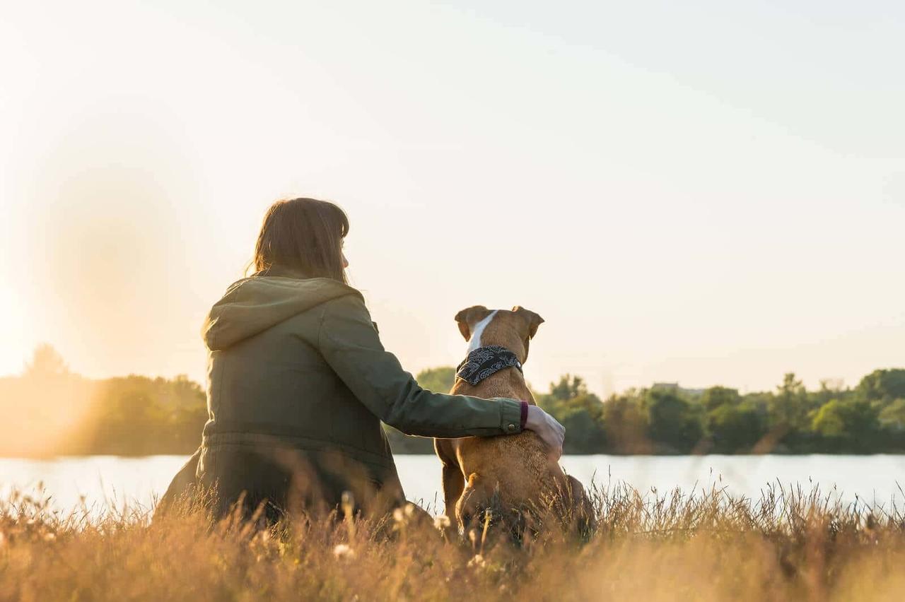 nehir kenarında köpeğiyle manzara izleyen kadın